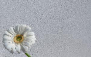 Tonputzwand von Emoton in fein geriebenem Weiss