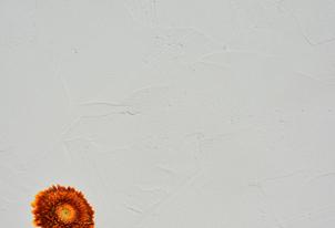 ARCHAICO Naturweiß - Loftoptik 1