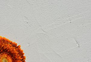 ARCHAICO Naturweiß - Loftoptik 2