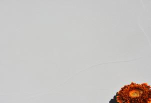 AREA fein Weiß - Großflächentechnik 7