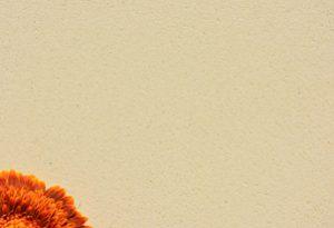 AREA fein geschliffen - Farbton Sahara dunkel 2