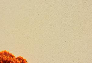 AREA fein geschliffen - Farbton Sahara dunkel 3