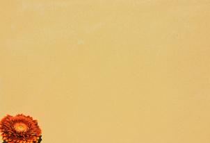 AREA fein verpresst - Farbton Ocra dunkel 1