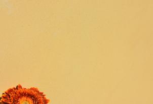 AREA fein verpresst - Farbton Ocra dunkel 2