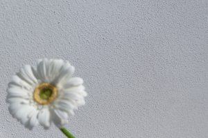 AREA grob Weiß - gefilzt