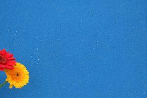 PIETRA geschliffen - Farbton Blu Scuro dunkel 1