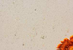PIETRA verpresst - Farbton Sahara hell 1