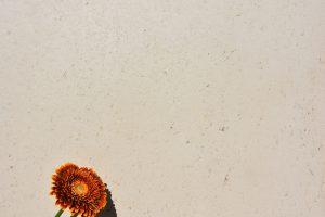 PIETRA verpresst - Farbton Sahara hell 2