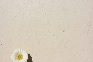 PIETRA verpresst - Farbton Sahara hell 3