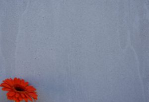 STRUTTURA verpresst - Farbton Blunotte dunkel 1