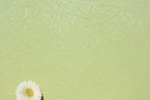 STUCCO Kellenstruktur - Farbton Primavera dunkel 1