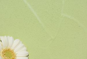 STUCCO mit Kellenschlag - Farbton Primavera dunkel 2