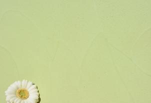 STUCCO mit Kellenschlag - Farbton Primavera dunkel 3