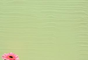 STUCCO Kellenstruktur - Farbton Primavera dunkel 2
