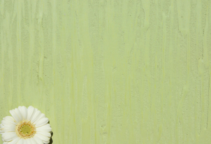 STUCCO vegetale Struktur - Farbton Primavera dunkel 2