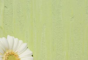 STUCCO vegetale Struktur - Farbton Primavera dunkel 3