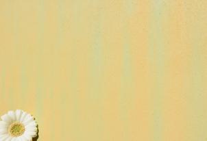 STUCCO zweifarbig verpresst - Farbton Ocra und Primavera 1