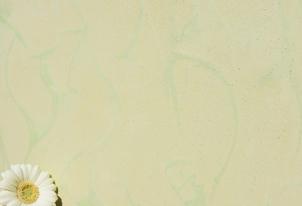 STUCCO zweifarbig verpresst - Farbton Primavera und Ocra hell 1