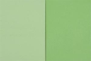 EMOTON - Farbton Nr. 203 Verde