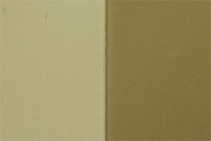 EMOTON - Farbton Nr. 401 Haselnussbraun
